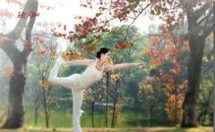 瑜伽行业APP开发能解决方案